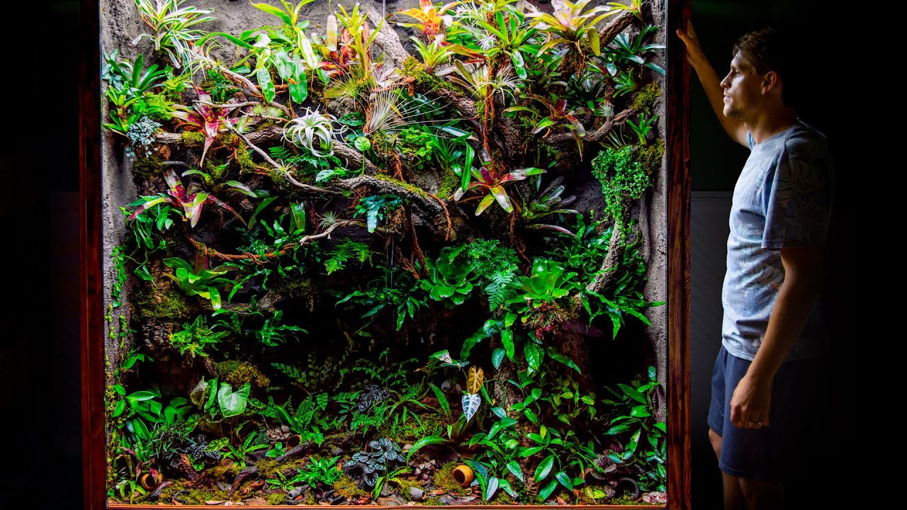 Giant DIY 600 Gallon Jungle Vivarium