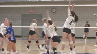 WDA Volleyball