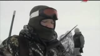 Зимняя охота на Гусей  Мороз и Гуси!