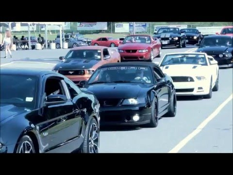 AM2015 - 7th Annual American Muscle Mustang Show - August 2015