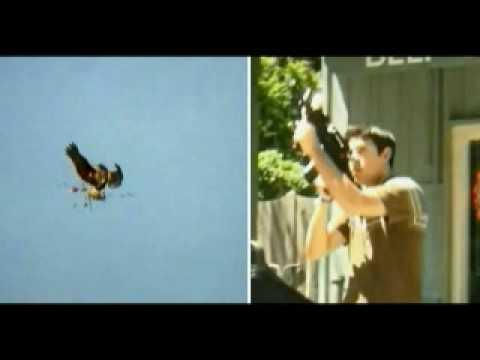 BIRDEMIC Star Alan Bagh Canadian Radio  CHRW  Vagrancy Films
