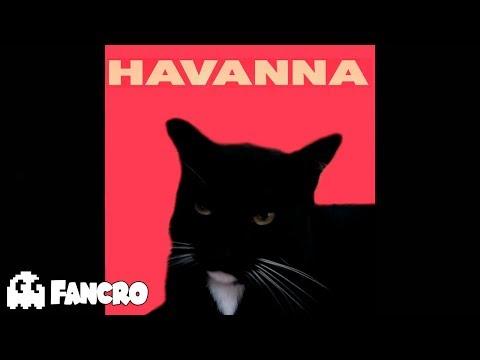 Havanna - Cover Gatos