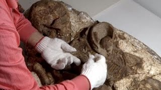 Stone Age Mother Found Cradling a Child in Shared Grave