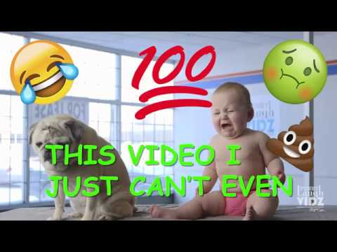 Welcome to Funny Laugh Vidz Dot Com.net