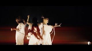 """ぜんぶ君のせいだ。""""ロマンスセクト""""Official MusicVideo"""