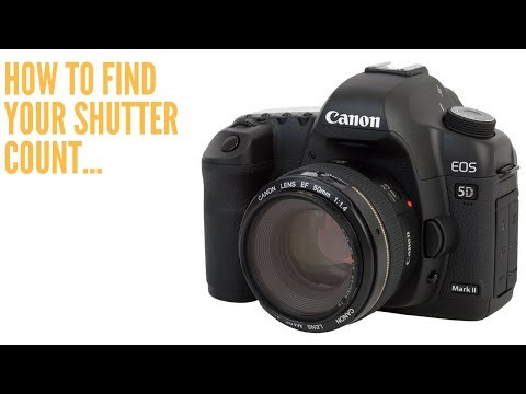 How To Find SHUTTER COUNT on CANON for Mac users..
