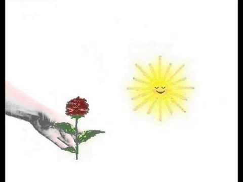 Есть на свете цветок алый-алый песня