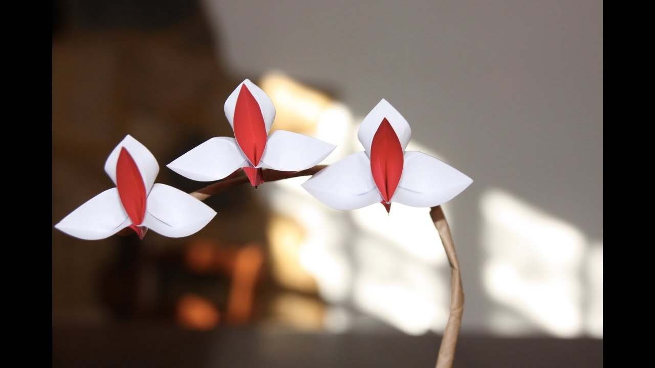 origami tutorial orchid youtube
