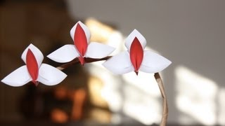 Repeat youtube video Origami tutorial - Orchid