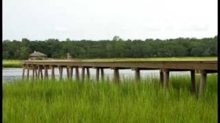 Time Lapse Green Heron Dock Construction