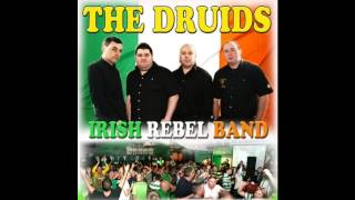 the druids farewell to bellaghy