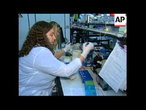 BRAZIL: NEW STRAND OF AIDS VIRUS DISCOVERED