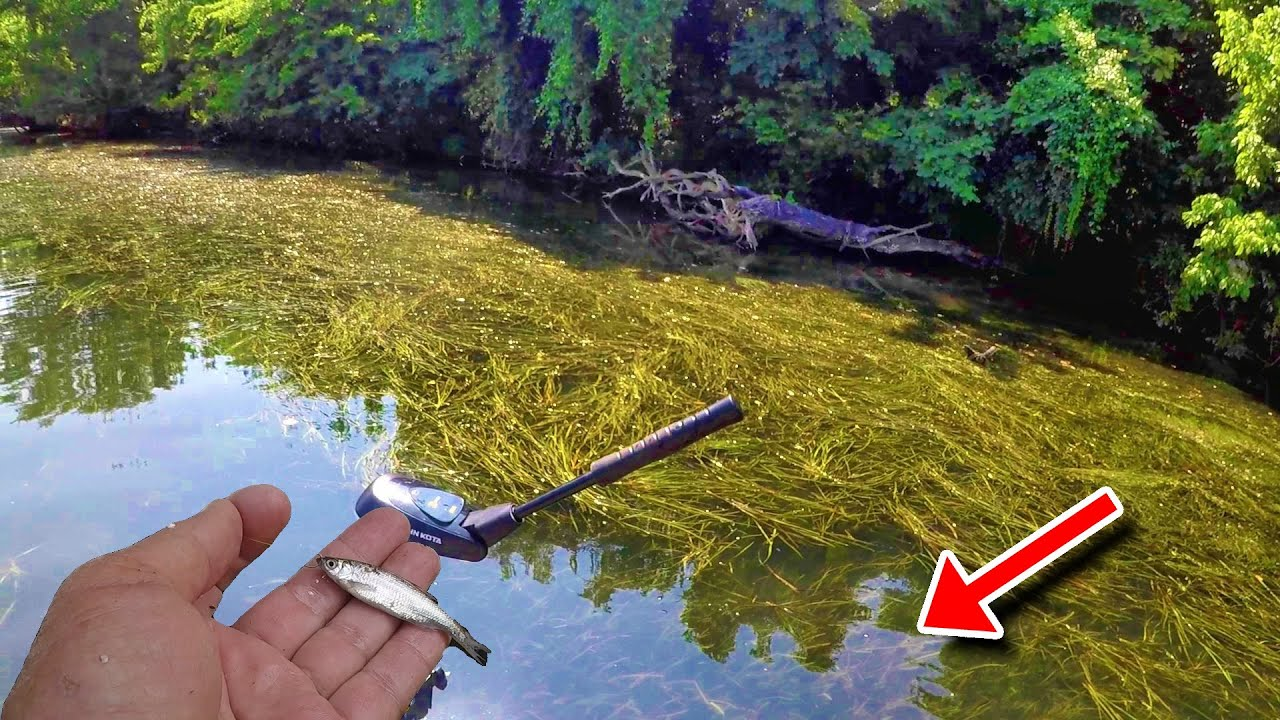 EASIEST Way To Catch SLAB Crappie!!!