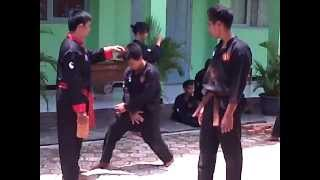 Video SILAT PUTRA NEGARA BOGOR download MP3, 3GP, MP4, WEBM, AVI, FLV Mei 2018