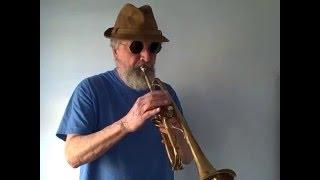 Selmer Bundy trumpet