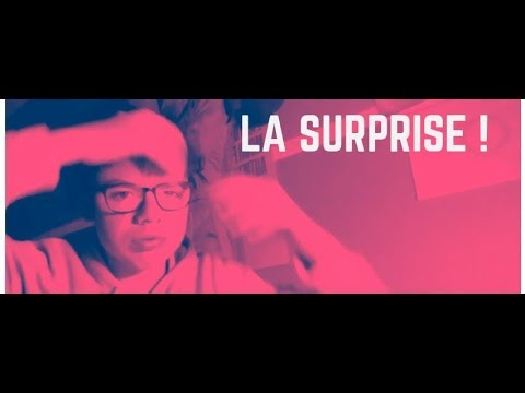 SURPRISE  [MARTINE-SALE]