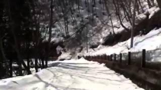 白馬鹿島槍スキー場 林間コース滑走