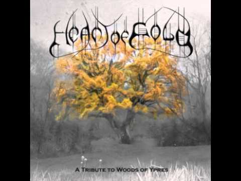 Amaranth - Allure of the Earth (Woods of Ypres cover)