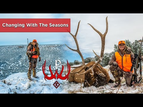 Plains Elk Hunt in Colorado with Kristy Titus