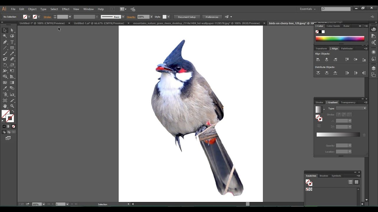 Remove Background From An Image Using Illustrator