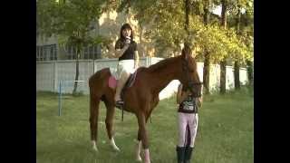 Конный спорт (Стаханов)