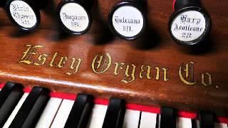 Johann Sebastian Bach, Wir Christenleut BWV 1090. Reed organ: Ivan Furlanis
