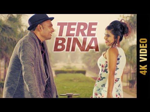 TERE BINA (Full Video)   RAJ   Latest Punjabi Songs 2017   AMAR AUDIO