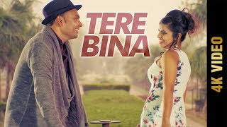 TERE BINA (Full Video) | RAJ | Latest Punjabi Songs 2017 | AMAR AUDIO