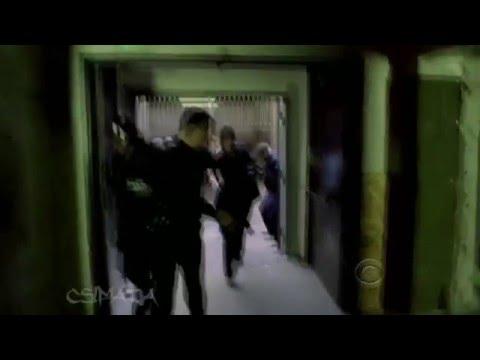 CSI NY Season 5