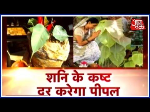 Dharm: Shani Ke Kasht Dur Karega Peepal