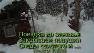 Поездка до зимовья  Закрываем ловушки  Следы сохатого и ...