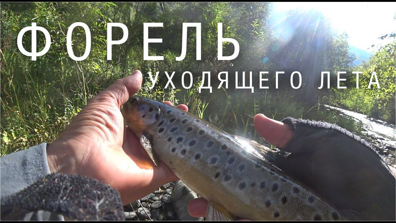 Рыбалка которая неинтересна не рыбакам! Кыргызстан, август 2020.