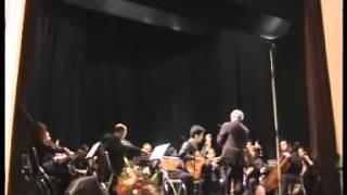 Vivaldi - Guitar Concerto in A Major - Tolgahan Çoğulu