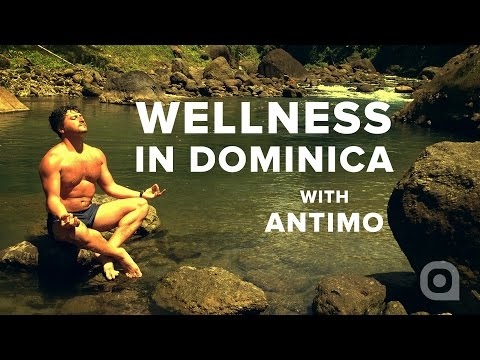 Wellness Retreat in Dominica