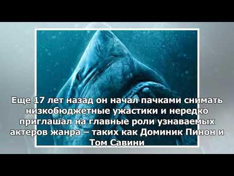 Клетка, глубина и челюсти: в России стартует фильм ужасов «Синяя бездна 2»