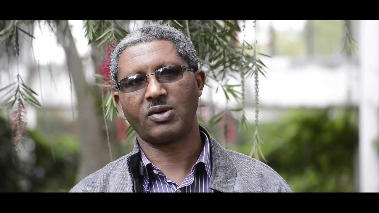Identifying effective dry forest management practices in Ethiopia