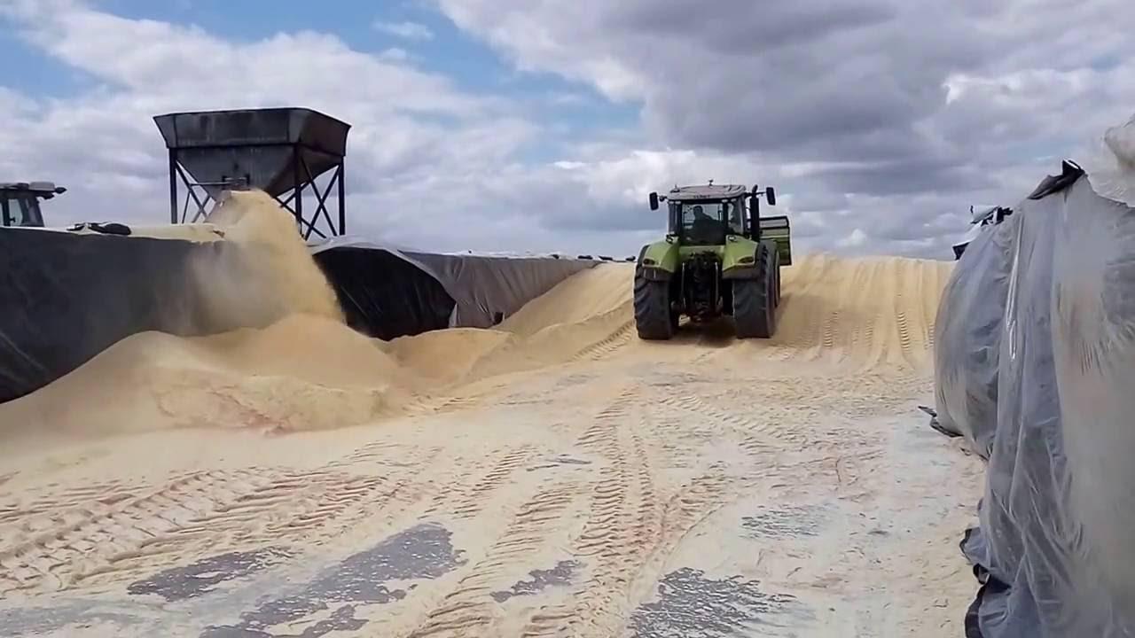 Дробилка для зерна купить зерновая дробилка дробилка РосЭкструдер .