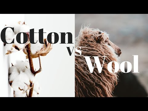 Cotton vs. Wool