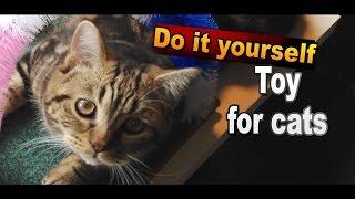 Игрушка для кошек и котят своими руками / Игрушки для кошек