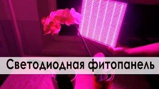 Светодиодная фитопанель для досвечивания растений 120 Вт двух спектров синий/красный(, 2016-01-10T18:19:28.000Z)