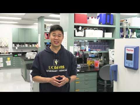 UC Davis School of Veterinary Medicine Virtual Tour
