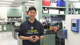 UC Davis School of Veterinary Medicine Virtual Tour