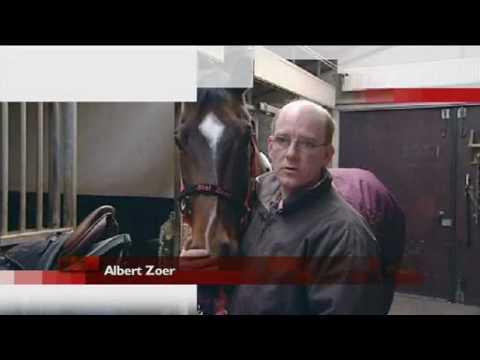 Albert Zoer geschokt over dood toppaard Okidoki