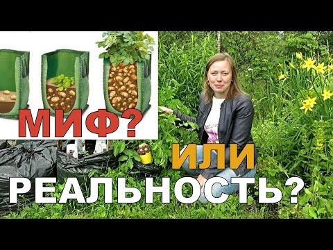 ОКУЧИВАНИЕ картошки В МЕШКАХ // Выращивание картофеля в мешках 3 / Potatoes in bags 3