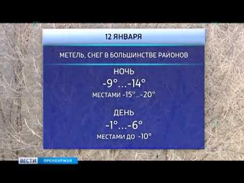 Какая погода ждет оренбуржцев на неделе
