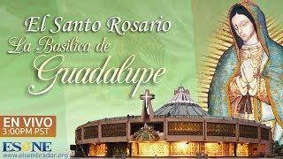 El Santo Rosario desde la Basílica de Guadalupe  - En Vivo  ¡Compártela y pasa la bendición! - ESNE
