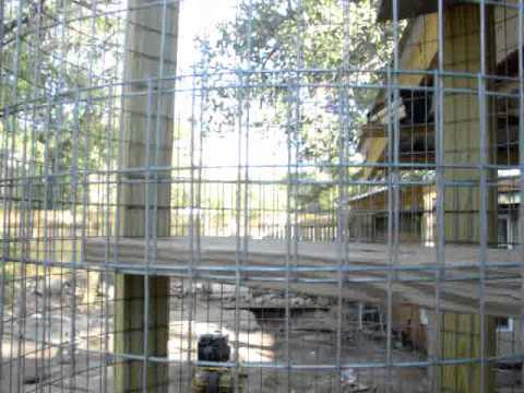 the outside cat house lookout tower kitty cat jungle gym - Cat Jungle Gym
