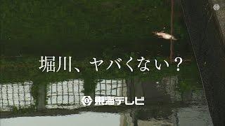 東海テレビ「堀川、ヤバくない?」 thumbnail