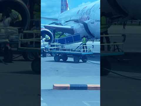 Wah begini yah cara handle barang cargo @ Batik air penerbangan makassar-sorong tgl 9 sep jqm 13.44