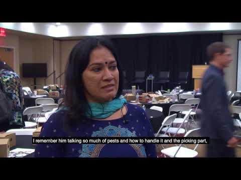 Indian farmer Sujathra says Bt cotton has transformed her farm